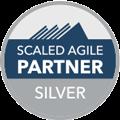 safe-silver-partner